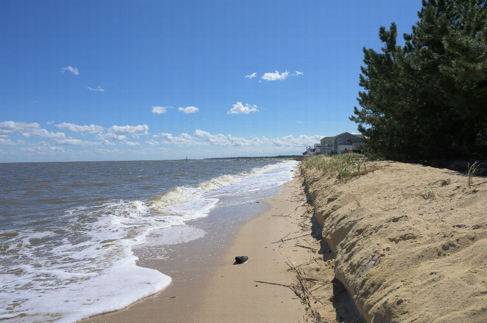 Photo of Banyan Delaware